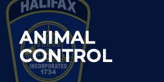 animal-control